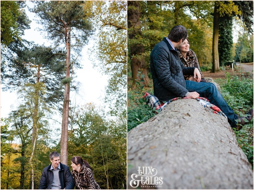 Autumn engagement shoot at elvaston castle couple sitting on a felled tree