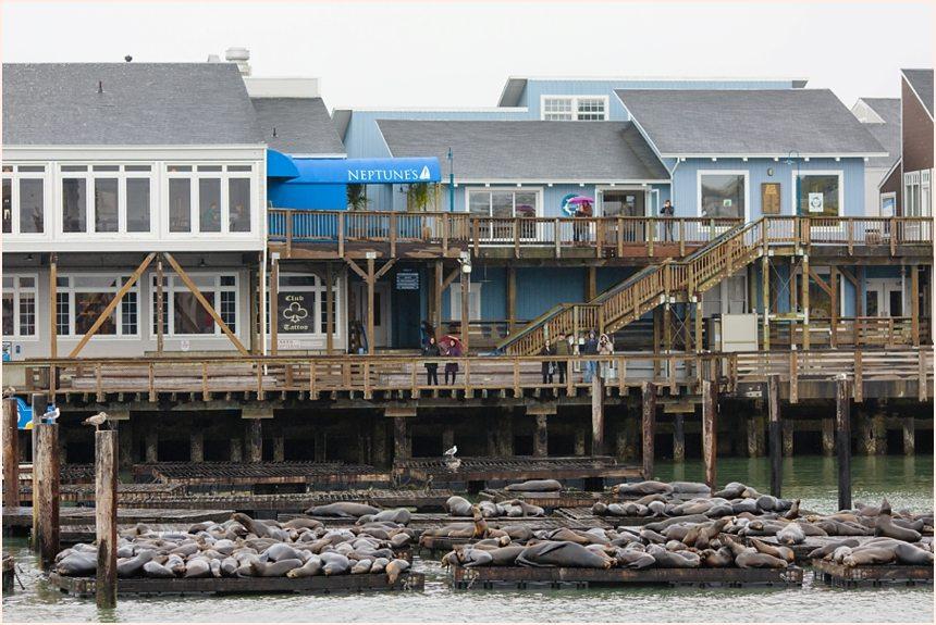 San Francisco Photography - Pier 39