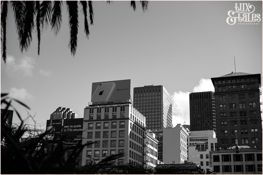 San Francisco Photography - skyline