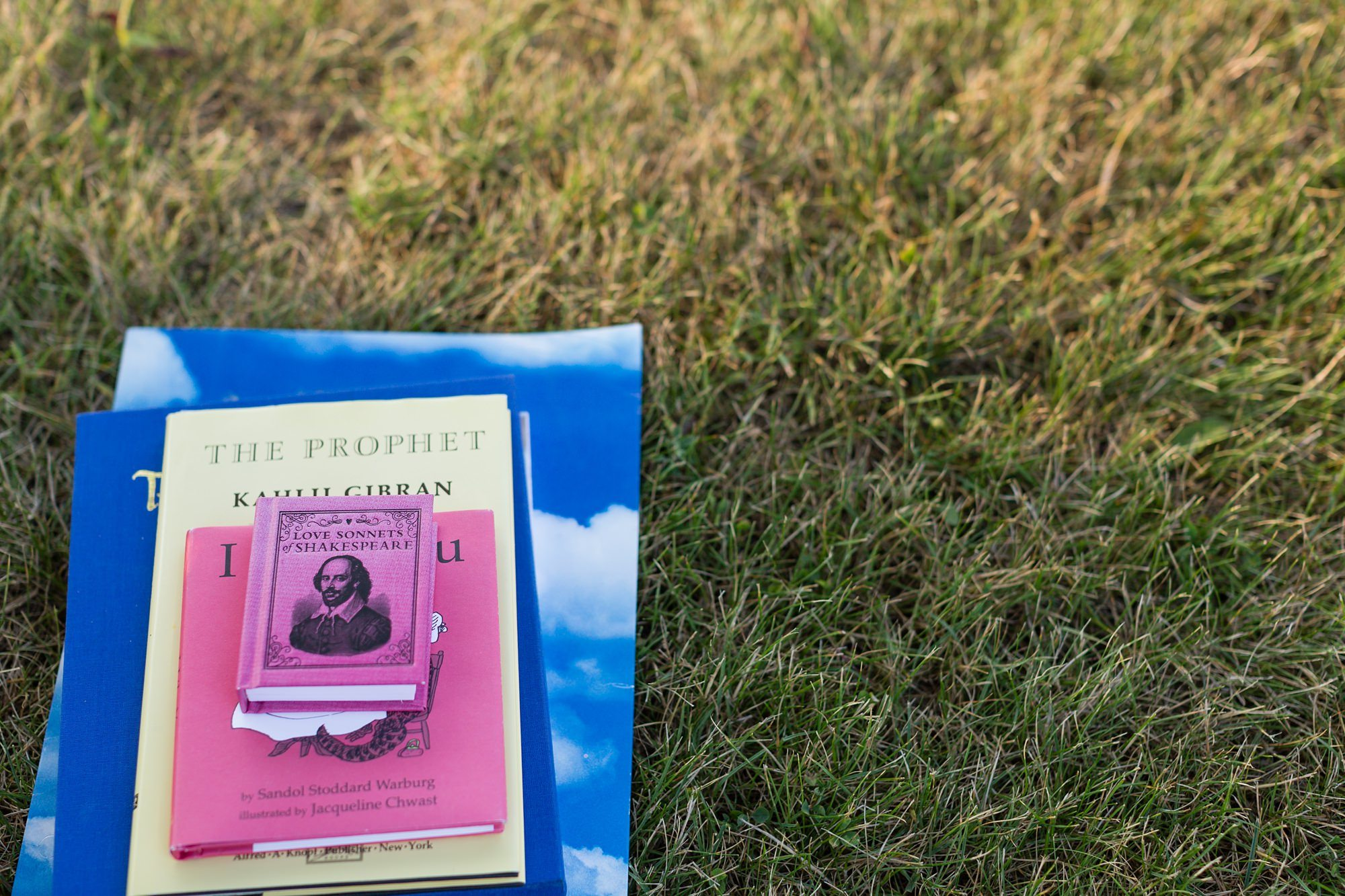 Stack of books in the grass with shakespeare